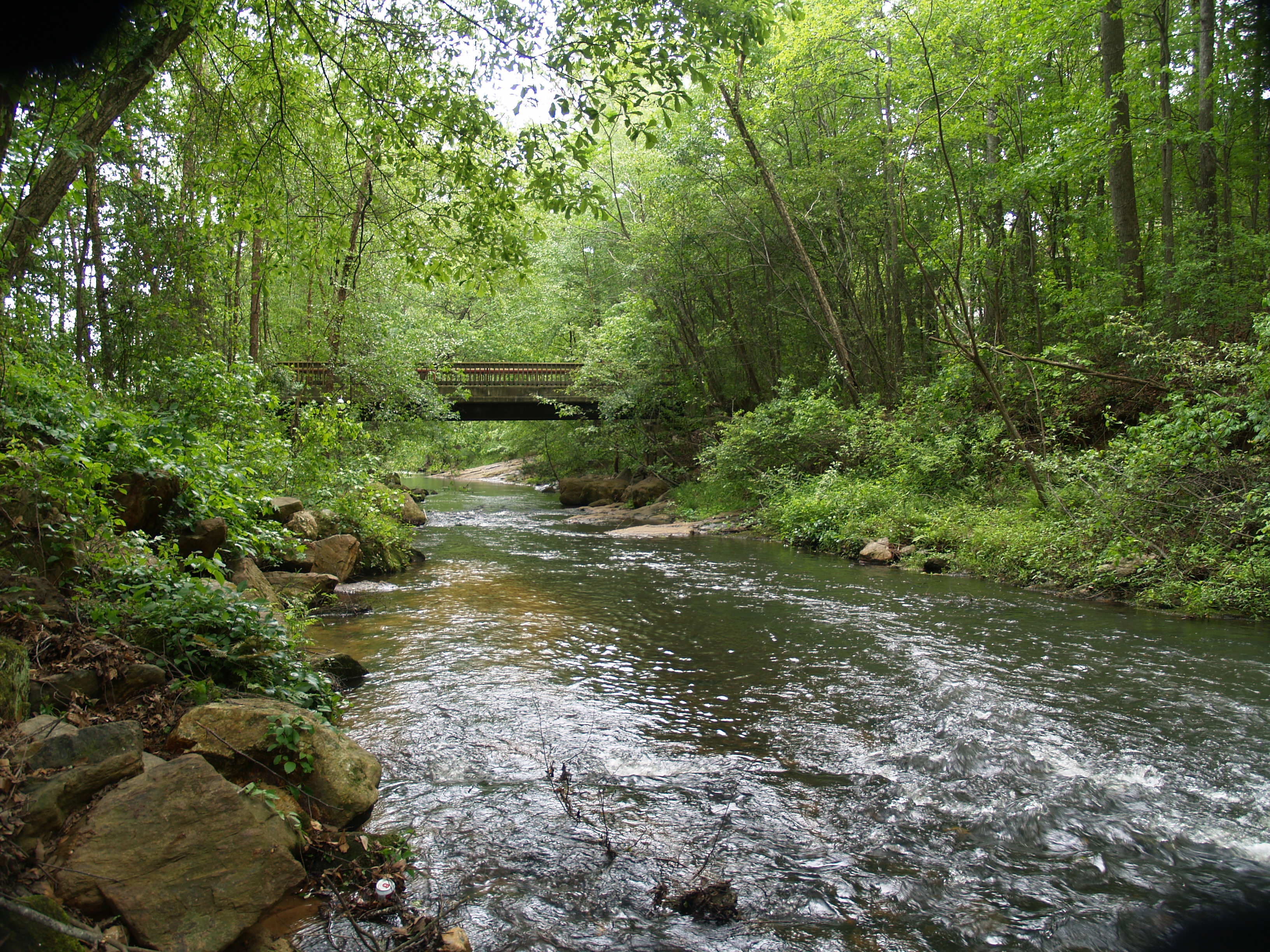Babbling Brook Issues Stoney Brook Homeowners Association